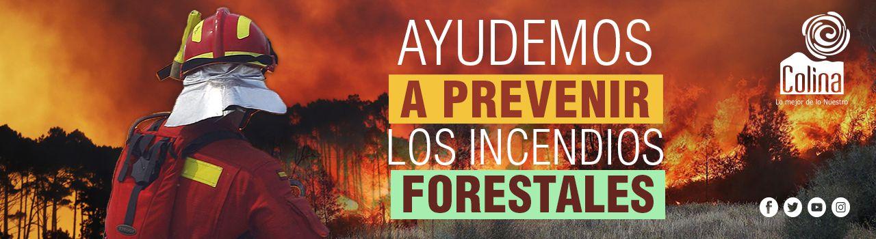 banner_incendios_forestales