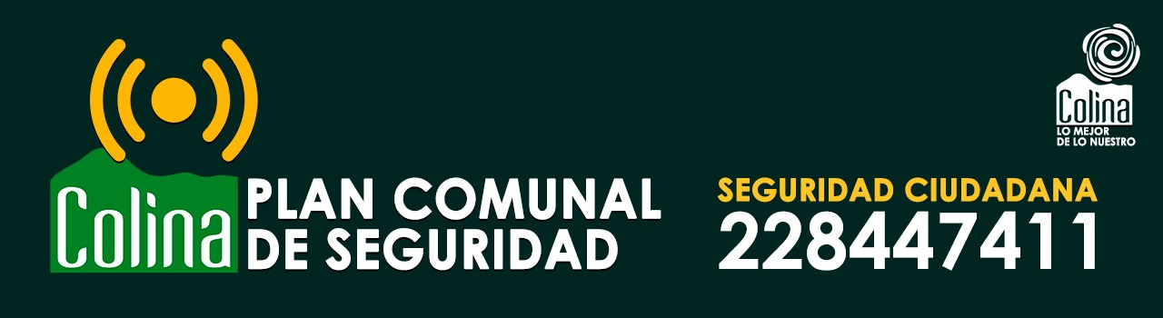 plan_comunal_seguridad_jul_2019