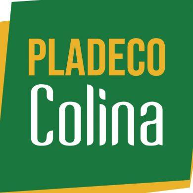 pladeco_caja_abr_2021