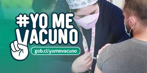 yo_me_vacuno_cuadro